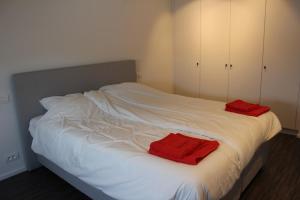 De Roeschaard, Дома для отпуска  Кнокке-Хейст - big - 25