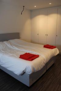 De Roeschaard, Дома для отпуска  Кнокке-Хейст - big - 26