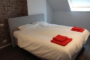 De Roeschaard, Дома для отпуска  Кнокке-Хейст - big - 27