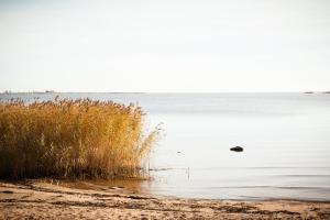 База отдыха Золотой Берег - фото 10