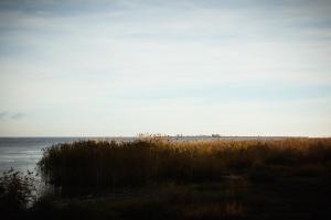 База отдыха Золотой Берег - фото 8