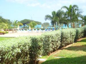 Garden Delight Two-bedroom condo - E125-2, Apartmány  Palm-Eagle Beach - big - 4