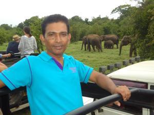 Bangalawa Resort, Guest houses  Habarana - big - 61