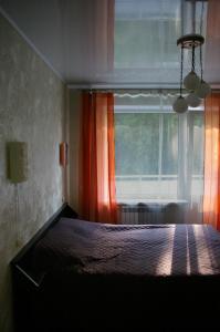 Апартаменты Пушкинские горы Комфорт - фото 14