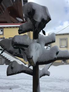 As Miguiñas do Cebreiro, Pensionen  Piedrafita - big - 30