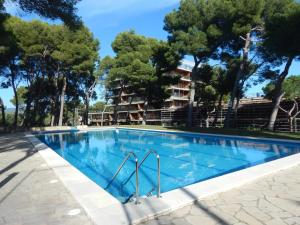 Eden Mar VII Girorooms, Apartmanok  Calonge - big - 13