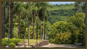 Farina Park Hotel, Отели  Bento Gonçalves - big - 91