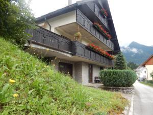 Apartment Dijak
