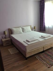 Trendafil Apartment