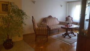 Apartment Papagajka - фото 2