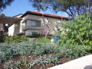 A Picture of Lovely home above the Kinneret