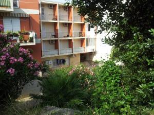 Apartment Bori