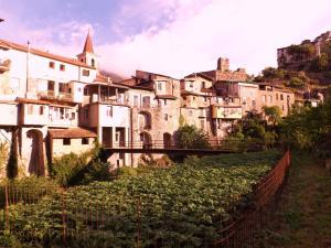 Casa Isolabona, Case vacanze  Isolabona - big - 21
