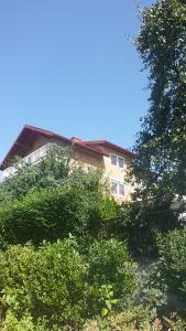 Apartments Sheila