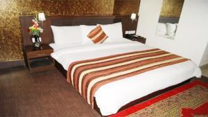 Airport Hotel Daya Continental, Hotels  New Delhi - big - 18