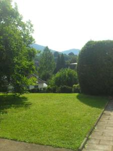 Haus Sahlbach, Appartamenti  Baden-Baden - big - 5