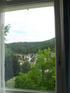 Haus Sahlbach, Appartamenti  Baden-Baden - big - 31