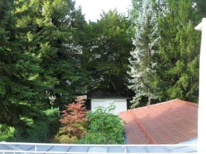 Haus Sahlbach, Appartamenti  Baden-Baden - big - 24