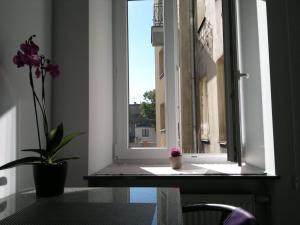 Kolorowe Apartamenty.  Foto 5