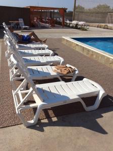 Hotel Shtorm, Fogadók  Bilshovyk - big - 19