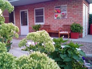 Гостевой дом Азовская русалочка - фото 24