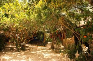 Cabañas La Luna, Hotely  Tulum - big - 106