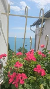 YaltaVoyage, Apartmány  Yalta - big - 50