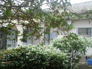 Residence Leo, Ferienwohnungen  Bassa - big - 31