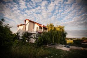 Pensiunea 4 Salcii, Гостевые дома  Băltenii de Sus - big - 1