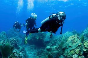 All Inclusive Bed & Beach & Fun Cancun