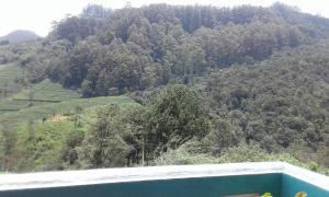 Cool Mount Guest, Homestays  Nuwara Eliya - big - 35
