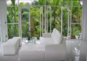 Frangipani Home