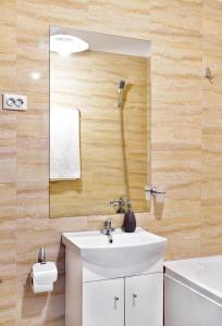 Palas Central Suites, Ferienwohnungen  Iaşi - big - 13
