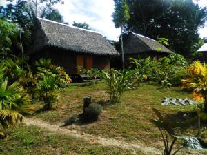 Amazon Eco Tours & Lodge, Хостелы  Santa Teresa - big - 36