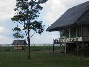 Amazon Eco Tours & Lodge, Хостелы  Santa Teresa - big - 30