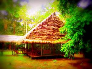 Amazon Eco Tours & Lodge, Хостелы  Santa Teresa - big - 20