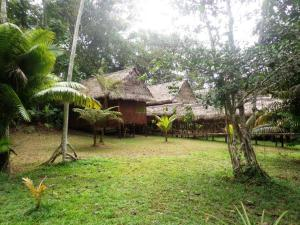 Amazon Eco Tours & Lodge, Хостелы  Santa Teresa - big - 51