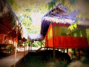 Amazon Eco Tours & Lodge, Хостелы  Santa Teresa - big - 50