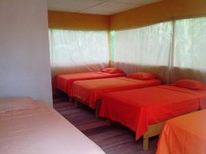Amazon Eco Tours & Lodge, Хостелы  Santa Teresa - big - 3