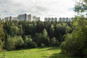 Апартаменты Изумрудные холмы - фото 8