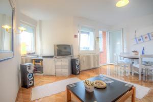 Asko Apartment, Ferienwohnungen  Novi Sad - big - 20