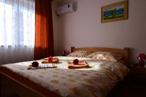 Apartment Lotika - фото 18