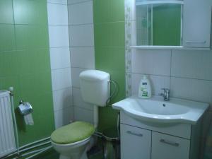 Pensiunea Casa Rodica, Гостевые дома  Гура-Гуморулуй - big - 64