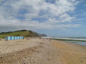 Pippin, Charmouth