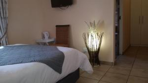 African Phoenix Guest Lodge, Affittacamere  Kempton Park - big - 8