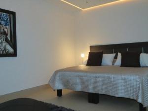 Amapas 353 303 Apartment, Апартаменты  Пуэрто-Вальярта - big - 10
