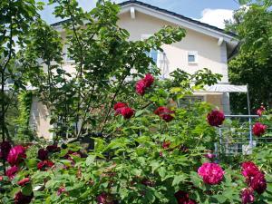Stadtoase-Potsdam Wohnung mit 2 Schlafzimmer