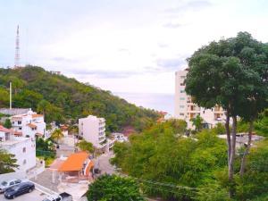 Condo Papelillos 3, Апартаменты  Пуэрто-Вальярта - big - 13