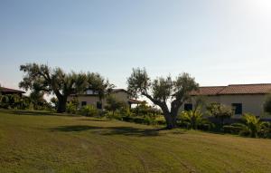 Agriturismo Ninea, Hétvégi házak  Ricadi - big - 31