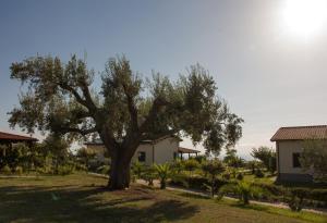 Agriturismo Ninea, Hétvégi házak  Ricadi - big - 10